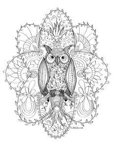 lilt kids free owl coloring page