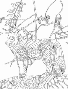 Animal Adult Coloring Book - Nature Patterns for Creativity and Calm - Fox